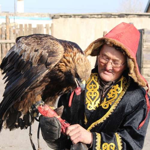 Day 74, 4 Feb 2014 -  Eagle Hunters in Mongolia, Mongolia